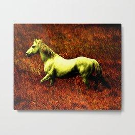MAGICAL HORSE Metal Print
