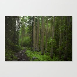 The Green Side Canvas Print