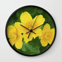 Marsh Marigold Caltha Palustris Wall Clock