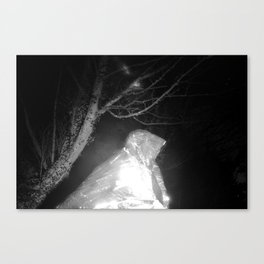 Nala/Olympia: A Case Study - Dream 03 Canvas Print