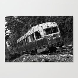 TRN-103 Canvas Print