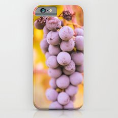 In vineyard iPhone 6s Slim Case