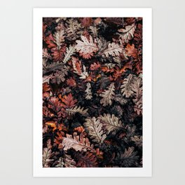 Autumn to winter dry leaves Art Print