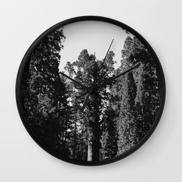Sequoia National Park XII Wall Clock