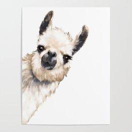 Sneaky Llama White Poster