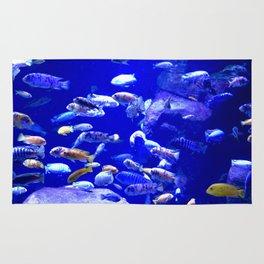 Fish Tank Rug