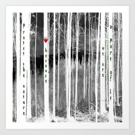Mirror of nature Art Print