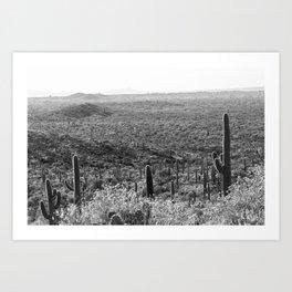 Wild West Art Print
