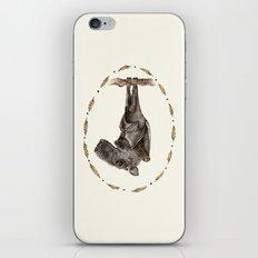 The Hammer Headed Fruit Bat iPhone & iPod Skin