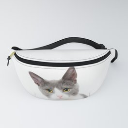 A beautiful grey and white kitten Fanny Pack