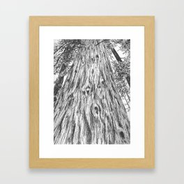 The Mighty Redwood Framed Art Print