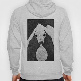 Rock Salt Gazing Hoody