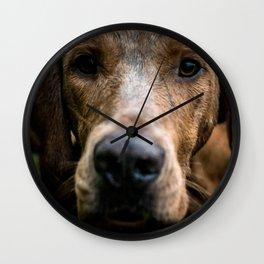 Fox Hound Wall Clock