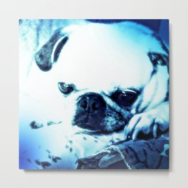 PUG LOVE ~ A Lovely Little Old Lady Metal Print