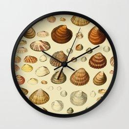 Vintage Shells Wall Clock