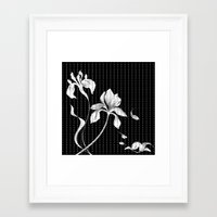 aelwen Framed Art Prints featuring Iris on Black by Aelwen