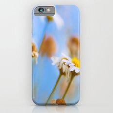 Daisies on Blue iPhone 6s Slim Case