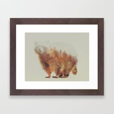 Norwegian Woods: The Raccoon Framed Art Print