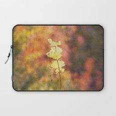 Seasonal Closeup - Autumn Laptop Sleeve