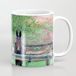 Free Us Coffee Mug