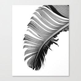 PALM LEAF black & white Canvas Print
