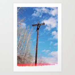 telephone pole (spring 2015) Art Print