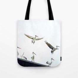 Pelicans of Woy Woy Tote Bag
