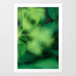 Green Green Green Art Print