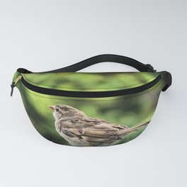 Little Feather Tasting Fanny Pack