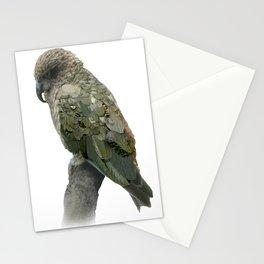 Kea Pattern Stationery Cards