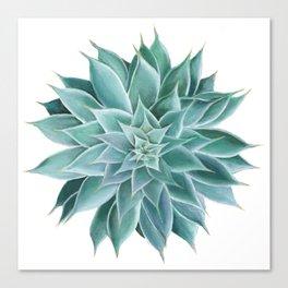 Succulent Acrylic Painting Canvas Print