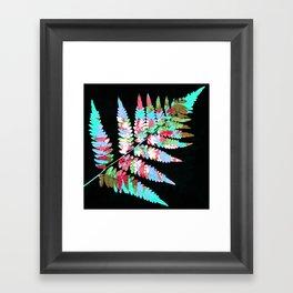 Fern in disguise - summer Framed Art Print
