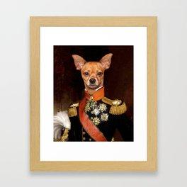 Admiral Chihuahua Framed Art Print