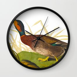 Bemaculated Duck Wall Clock