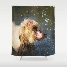 Make a BIG Splash Shower Curtain