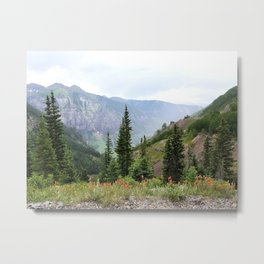 Wonders of the Mountainside Metal Print