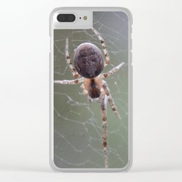 Spider on Orb Web Clear iPhone Case