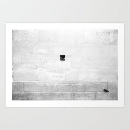 Bottle Wall with Pigeon (Paris, France)  Art Print