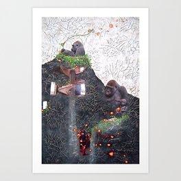 Physalis alkekengi Art Print