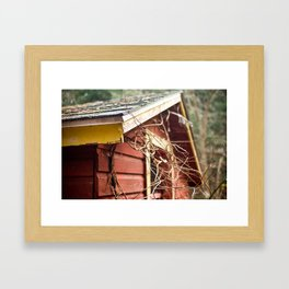Red and Yellow 3 Framed Art Print