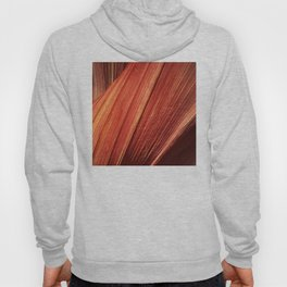 """Breathtaking Canyon Wall - """"The Wave"""" - Epic Close Up Hoody"""