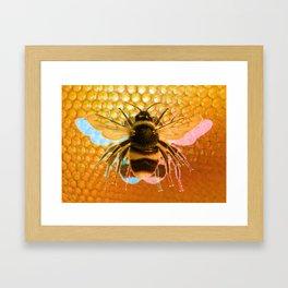 3-Bees Framed Art Print