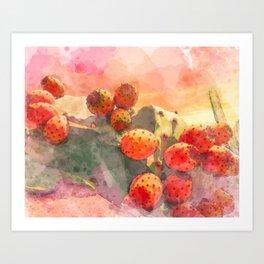Watercolor Prickly Pear Cactus Fruits Red Sky Art Print
