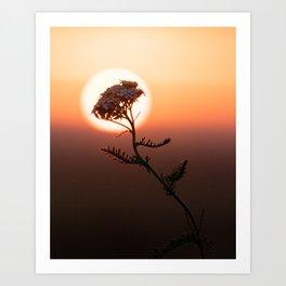 The Wereflower Art Print
