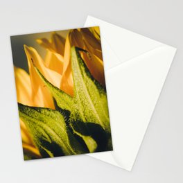 Sunflower (2) Stationery Cards