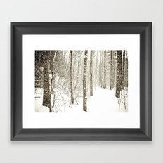 Wintry Mix Framed Art Print