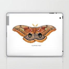 Polyphemus Moth (Antheraea polyphemus) II Laptop & iPad Skin