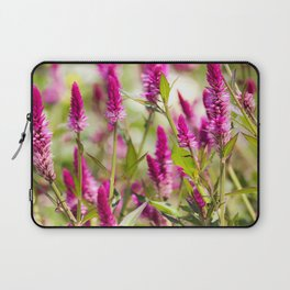 Colorful Celosia Laptop Sleeve