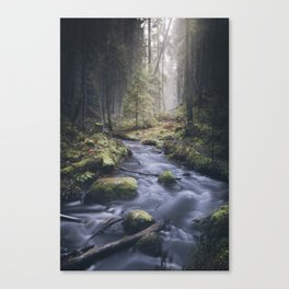 Silent whispers Canvas Print