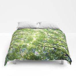 Green Maples Comforters